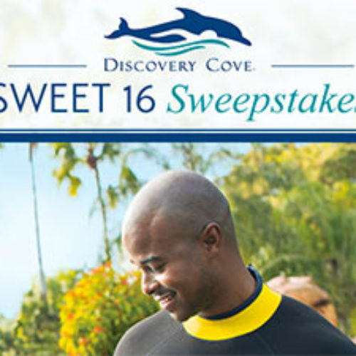 Win A Discovery Cove Vacation