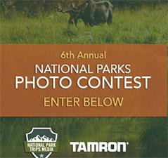 Win A Tamron Camera Lens
