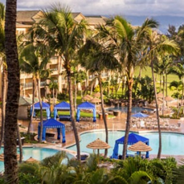 Win a Trip to Maui for Fed Cup