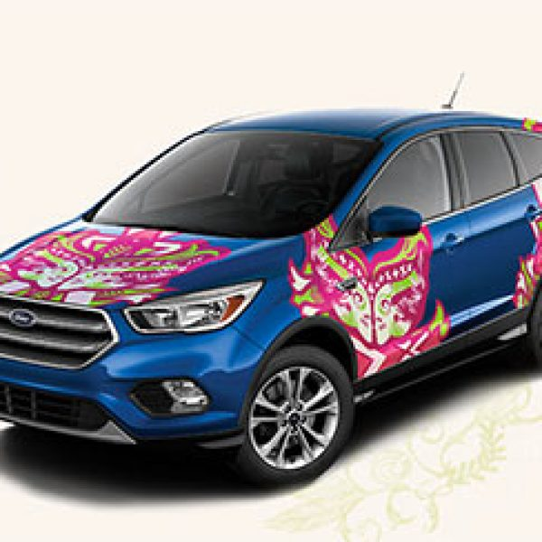 Warriors In Pink: Win a 2017 Ford Escape