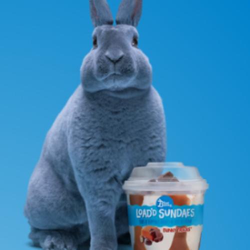 Win 1 of 700 TaskRabbit Credits from Blue Bunny