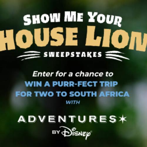 Win a South African Safari from Disney