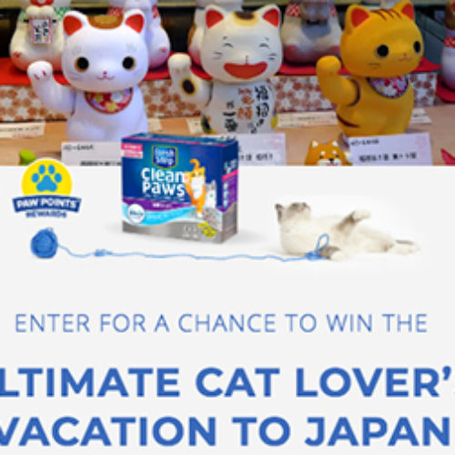 Win a Cat Lover's Vacation to Japan