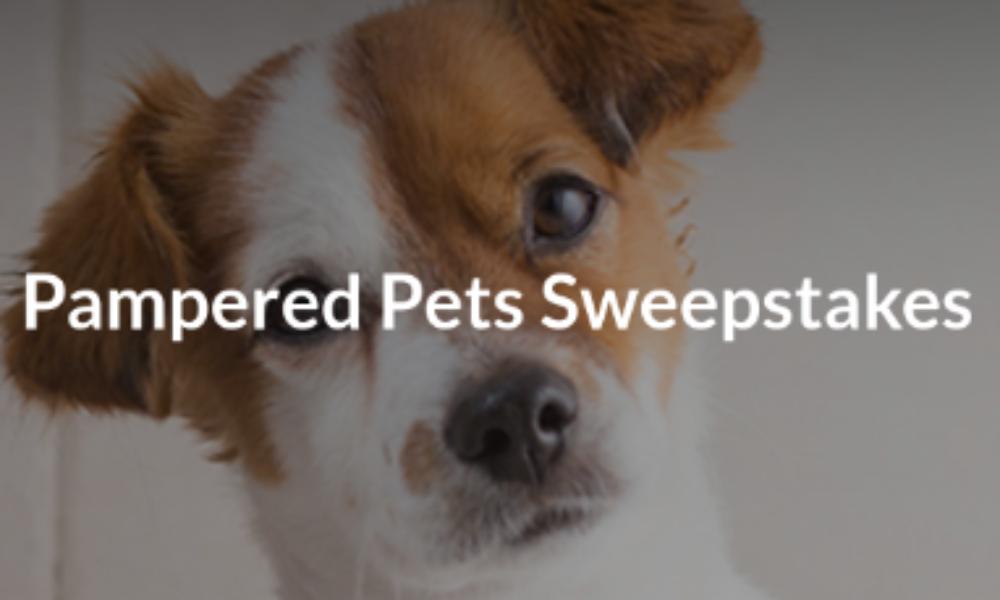 Win a Home Pet Spa