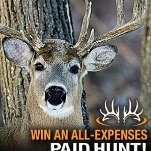 Win a Montana Whitetail Hunt from Buckmasters