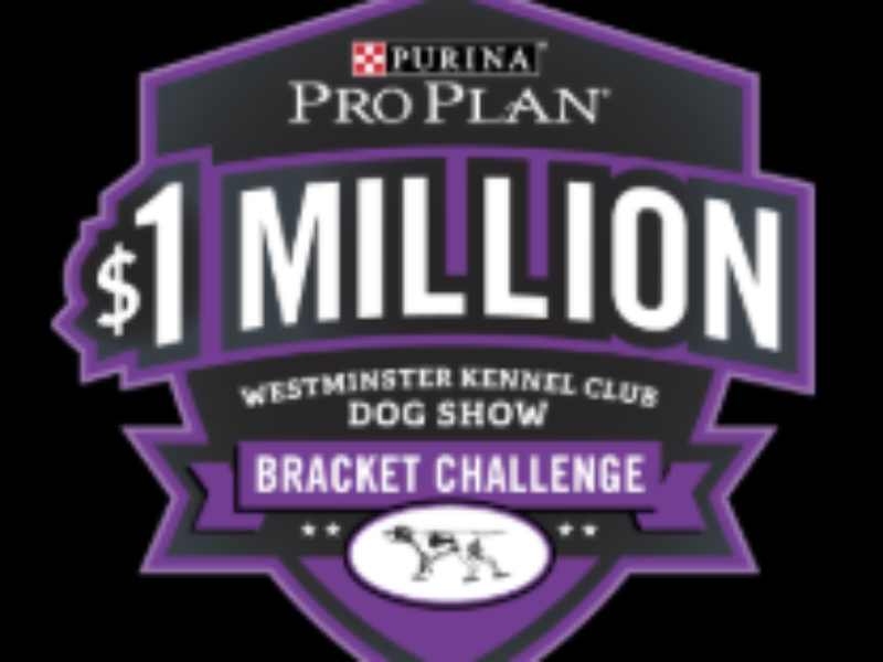 Win $1 Million from Purina Pro Plan