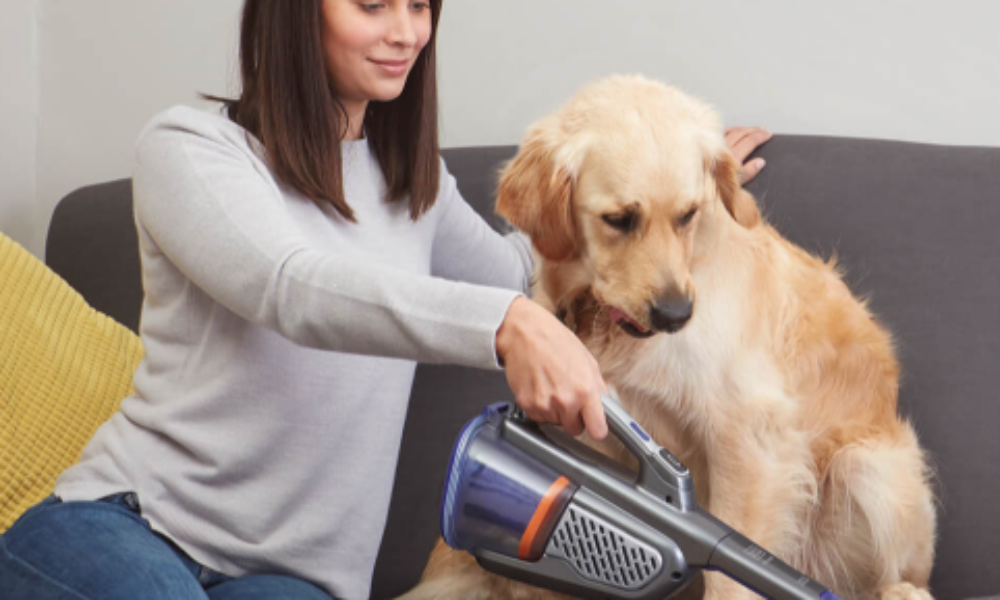 Win a Black+Decker Pet Product Prize Pack